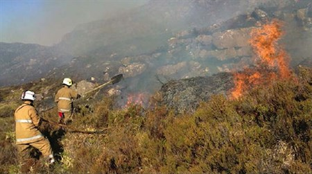 National ___wildfires _450x 251